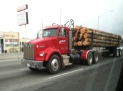 I saw this log truck rolling through the Bay Area. Just a little reminder of where wood comes from.