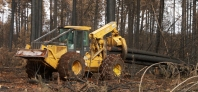 Cat skidder, Cat, skidder, skidding, logs, logging