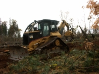 Cat skidder, skidder, Caterpiller, skidding, logs, logging