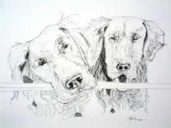 Divya's portrait of Blaze and Hunter.