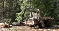 Valmet, forwarder, logs, logging