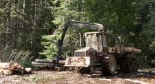 Valmet, forwarder, logs, logging