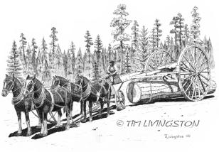 Logging, Horses, horse logging, skidding, historic logging