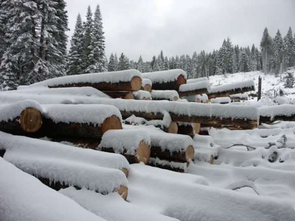 logs, snow, snowy