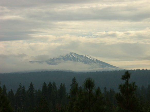 Magee Peak, volcano, mists, pines, nature, photography