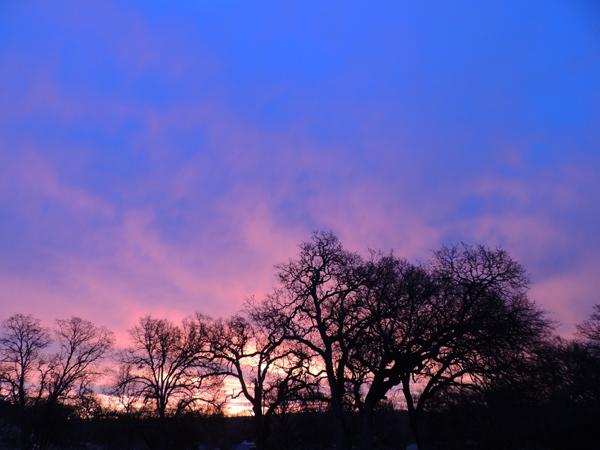 nature photography, photography, sunrise