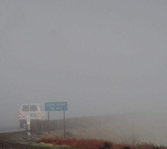 Vista point, fog, oddity