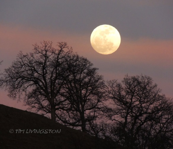 Full moon, moon rise, photograpy
