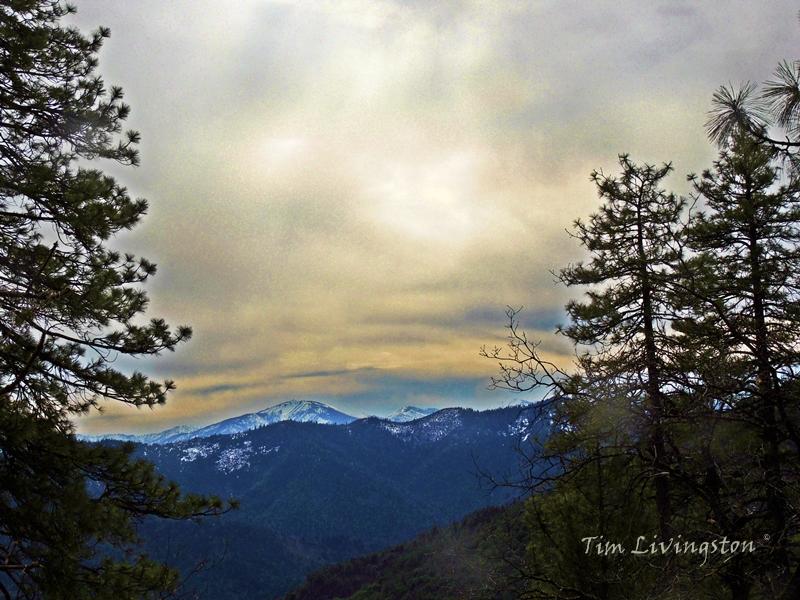 Western Shasta area.