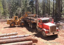 Front-end loader, loader, logging, logger, photography