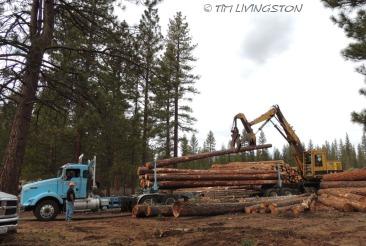 loader, logging, heel-boom, shovel, loggers