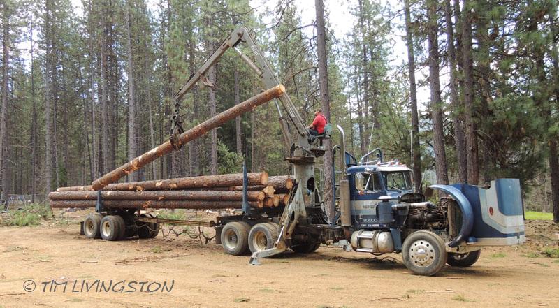 Self-loading logging truck, loader, logging, logger, photography