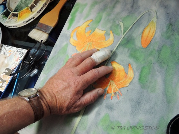 Forester Artist, watercolor, lillies