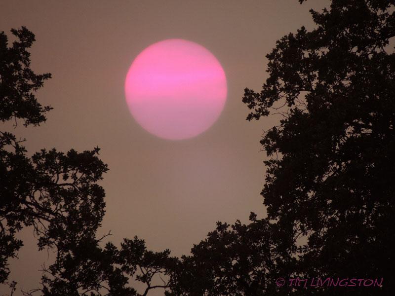 Sun, Sunset, fire, wildfire, smoke, photography
