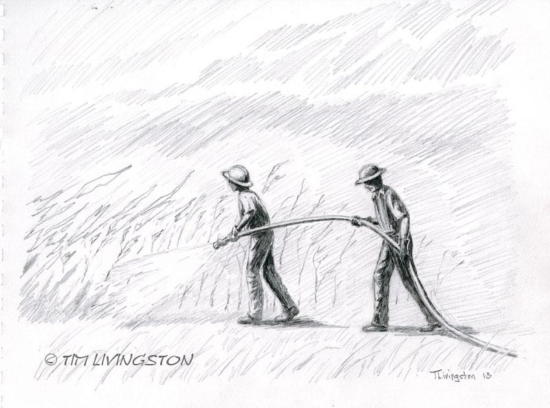 pencil, sketch, drawing
