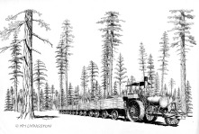 Pen and ink, traction engine, historic, logging, lumber