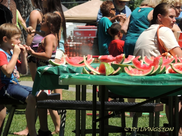 Lumberjack Fiesta, logging sports, timber sports, lumberjack sport, picnic, Americana, McCloud, watermelon eating contest, horseshoes, softball, Red Tail Publishing