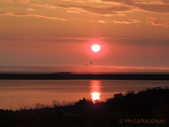 sunset, Smith River, nature, photography