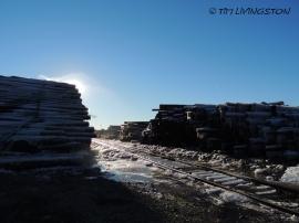 log deck, logs, sawmill