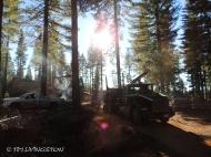 log truck, loader, logging, logger, forestry, timber harvesting