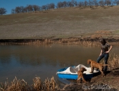 Kinta and Sailor are curious about the peddle boat.