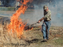 yardwork, forester, flames, fire