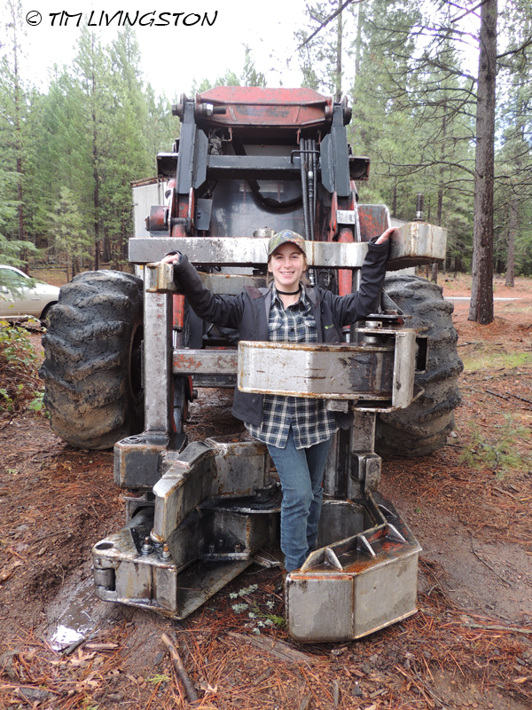 Forestry, mentoring, education