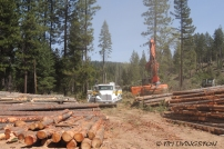 service truck, log processor, log, logger, logging