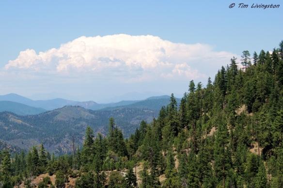 thunderstorm, lightning, wildfire, forestry