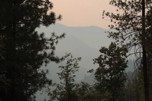 It was still very smoky up near camp.