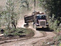 logging truck, log truck