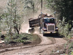logging truck, log truck