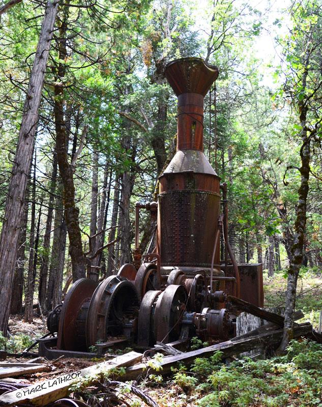 steam donkey, Willamette steam donkey,Willamette Iron Works, logging, logging history