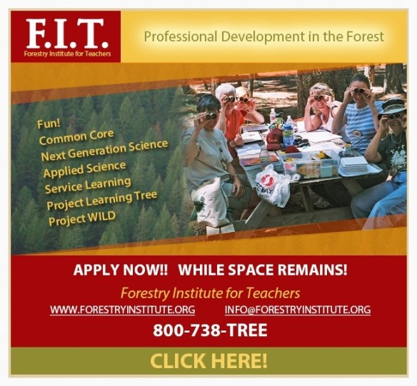 Forestry Institute for Teachers