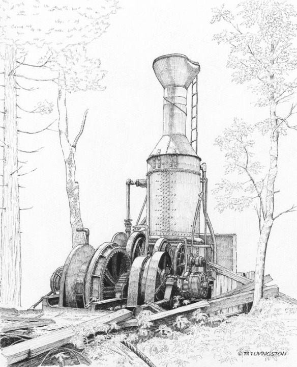 steam donkey, Willamette steam donkey, steam yarder, pen and ink, pen, ink, drawing.