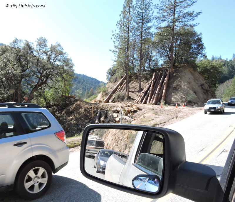 logs, logging