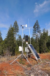 weather station, fire weather, forestry