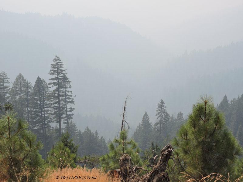 Trinity County, wildfire, smoke