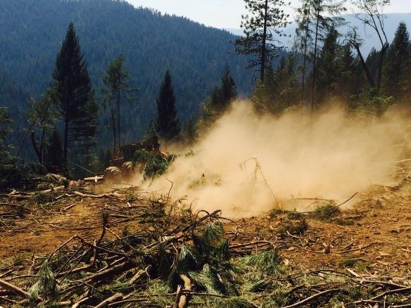 skidder, logging loggers