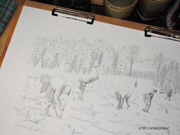 TimberPlanters