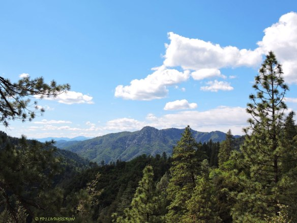 A view of the southern Sierra Cascades las summer.