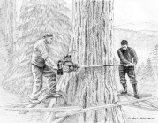 pen and ink, vintage logging art, logging art