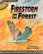 Firestorm in the Forest