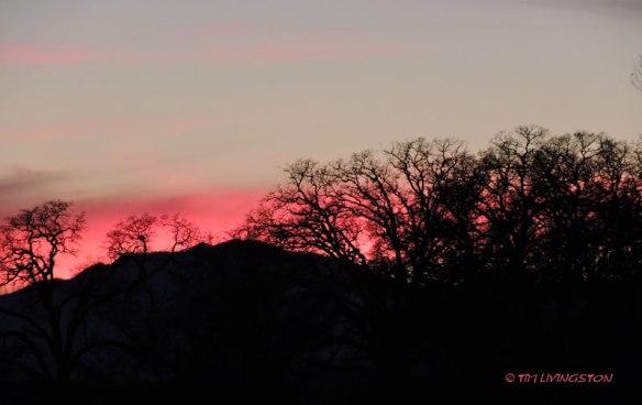 Moon, moonrise, sunset